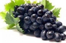 Ефективні рецепти на основі винограду для лікування запорів