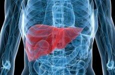 Як болить печінка: симптоми, що робити, лікування у жінок, причини і ознаки