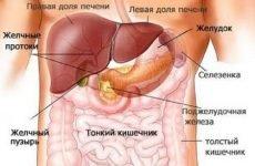 Біль у правому підребер'ї після їжі: чому болить спереду, причини