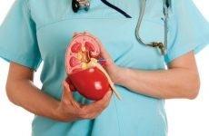 ЧМС нирки: які патології, симптоми, причини, лікування