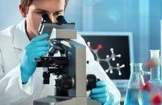 Розшифровка спермограми: показники норми