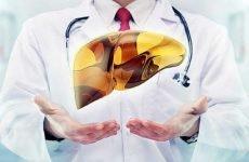 Дієта для печінки і жовчного міхура: корисні продукти при захворюваннях, принципи харчування