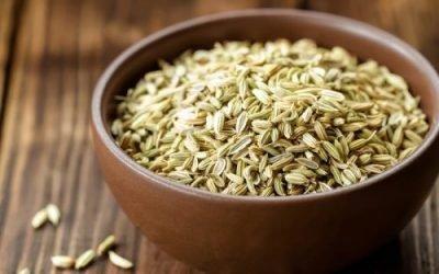 Кріп від циститу: як приготувати насіння кропу, заварювати ванночки і пити відвар для жінок, лікування настоянкою з насіння при циститі