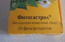 Препарат на рослинній базі для лікування патологій ШКТ — Фитогастрол