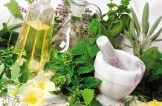 Лікування пієлонефриту в домашніх умовах: як лікувати гострий пієлонефрит травами, фітотерапією у жінок і дорослих