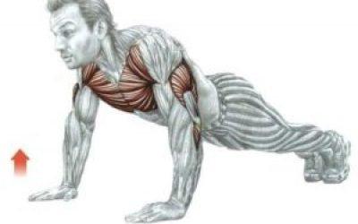 Вправи для малого тазу для чоловіків результати зміцнення комплекс тренування рекомендації