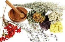 Лікування нирок народними засобами в домашніх умовах: найбільш ефективні засоби по очищенню нирки у чоловіків і жінок, як лікувати болю в нирках народною медициною