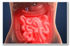 Лікування грибка в шлунку – причини і симптоми