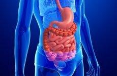Лікування Еритематозної гастропатії — суть патології, причини та діагностика