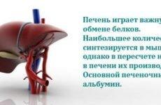 Який аналіз крові показує стан печінки, показники захворювань, біохімія