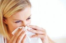 Харчування при нежиті: які продукти корисні і шкідливі при хворобі