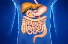 Ознаки розвитку синдрому короткого кишечника і лікування відхилення