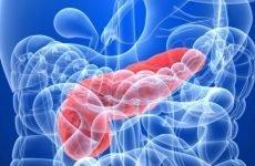 Цілі і способи визначення рівня панкреатичної еластази