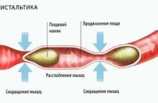 Симптоми зміни перистальтики і нормалізація функцій органу