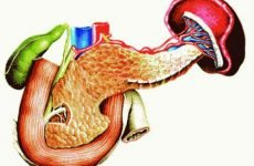 Антибіотики при панкреатиті у дорослих, лікування запалення підшлункової залози