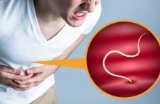 Різновиди аналізів на виявлення глистів по крові і калу