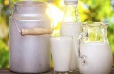 Все про користь молочних продуктів при лікуванні гастриту