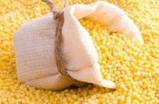 Дозволено харчуватися кукурудзою при гастриті
