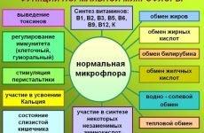 Правила застосування Стимбифида та можливі обмеження до лікування