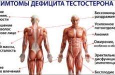 Норма тестостерону у чоловіків рівень підвищений знижений стабілізація рекомендації