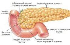 Як болить підшлункова залоза: симптоми захворювань у чоловіків і жінок, причини і лікування