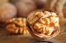 Яка норма горіхів в день?