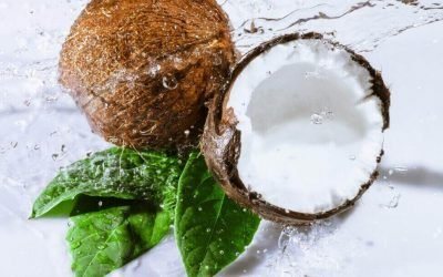 Як вибрати стиглий і смачний кокос