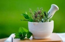 Сечогінні трави для зняття набряків | Список трав і рецепти