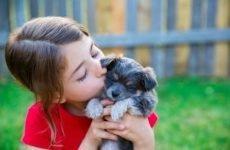 Аскаридоз у дітей: симптоми і лікування, ознаки, як лікувати сучасними методами