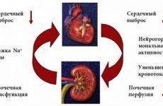 Асцит при цирозі печінки: скільки живуть люди, лікування, чи можна вилікувати