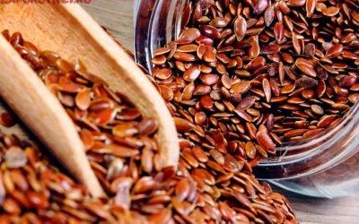 Насіння льону: користь і шкода, як приймати при запорах (до їжі або після), чи можна давати дітям