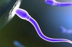 Астенозооспермия: це що таке, причини, симптоми, лікування