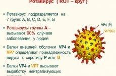 Ротавірусна інфекція у дорослих і дітей: симптоми і лікування захворювання, профілактика