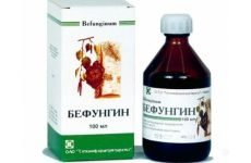 Особливості лікування гастриту Бефунгином