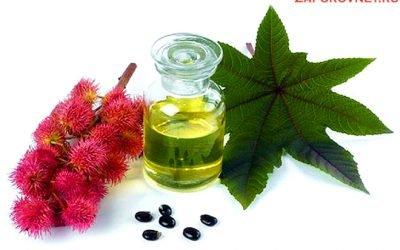 Лікування запору касторовою олією: спосіб застосування (інструкція, дози), прийом касторки в капсулах