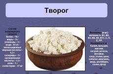 Як використовувати в раціоні сир при гастриті