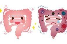 Вірусний перитоніт: причини, симптоми, лікування
