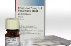 Відгуки та інструкція по застосуванню препарату Кондилин як ліки від генітальних кондилом