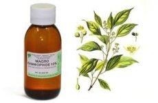 Камфорна олія для обличчя від зморшок, відгуки про користь для шкіри