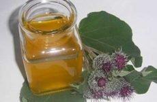 Кіста на нирці: лікування народними засобами, як лікувати кісти чистотілом