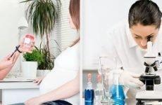 Кишкова паличка у сечі при вагітності Симптоми і лікування