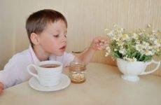 Лікування гастриту народними засобами: найбільш ефективні рецепти, відгуки, як лікувати