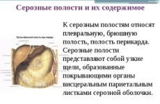 Серома післяопераційного рубця: причини появи серозної рідини під швом, можливі ускладнення та лікування