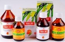 Позбавлення від гастриту, виразки, інших уражень ШКТ за допомогою обліпихової олії