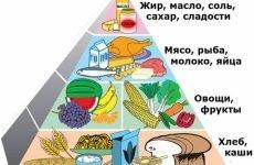 Дієта при панкреатиті підшлункової залози в період загострення: зразкове меню