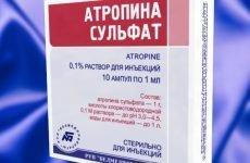 Лікування підшлункової залози лікарськими препаратами в домашніх умовах