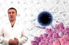 Аглютинація сперматозоїдів причини діагностика рекомендації лікування