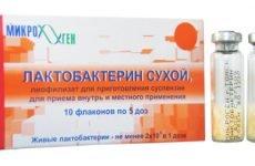 Як відновити мікрофлору кишечника після антибіотиків: лікування препаратами, народними засобами