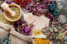 Трави для чоловічого здоров'я зміцнення рослини рецепти рекомендації