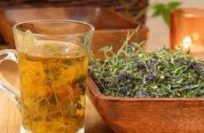 Народні засоби від алкоголізму: трави і бади від алкоголізму